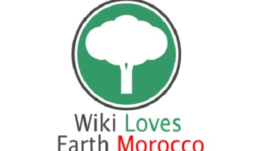 Wiki-Loves-Earth-Competition-to-Showcase-Natural-Scenes-of-Morocco.jpg