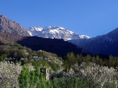 Court-of-Auditors-Calls-on-Morocco-to-Better-Manage-National-Parks-238x178.jpg