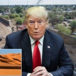 8981850-Donald-Trump-suggested-building-a-wall-in-the-SAHARA-to-stop-immigrants-to-Europe-995150455898185.png